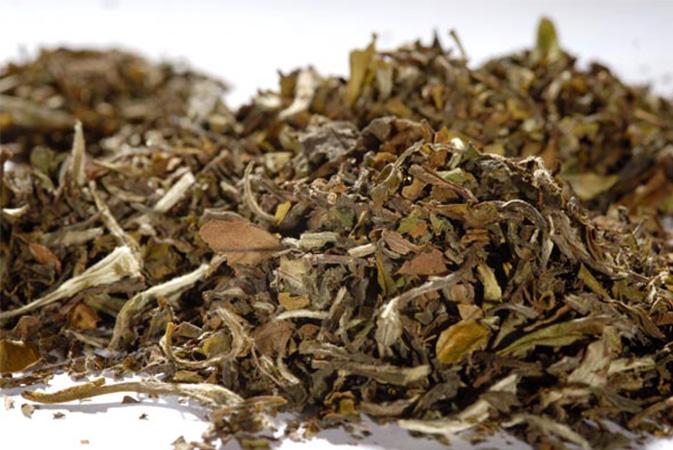 Pai Mu Tan - valkoinen tee, maustamaton tee - Runda Munken Teekauppa