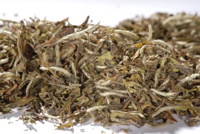 Pai Mu Tan Organic - valkoinen tee, maustamaton tee - Runda Munken Teekauppa