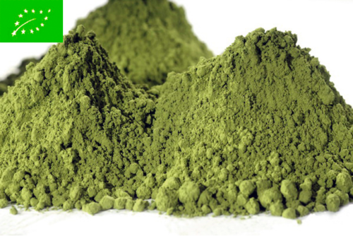 Beginners Matcha Organic - vihreä tee - maustamaton tee - Runda Munken Teekauppa