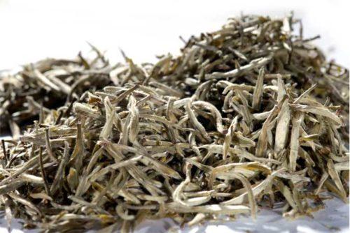 Yin Zhen 1st Silverneedle - valkoinen tee - Runda Munken Teekauppa
